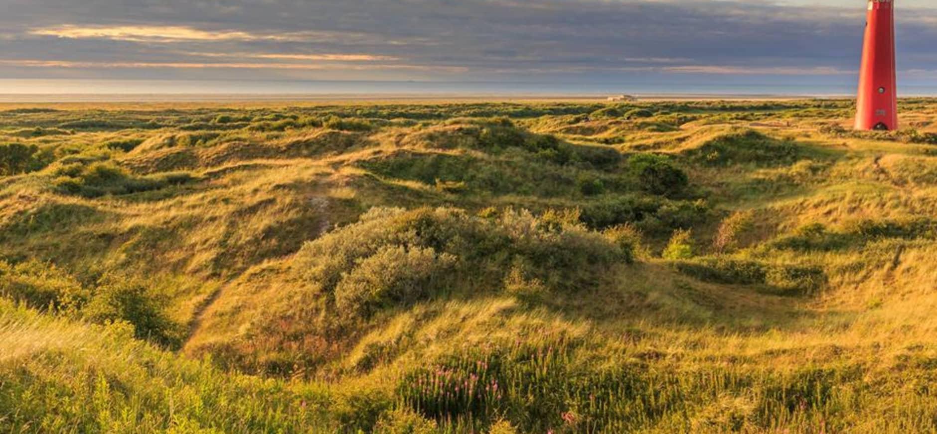 Een klooster in de duinen?