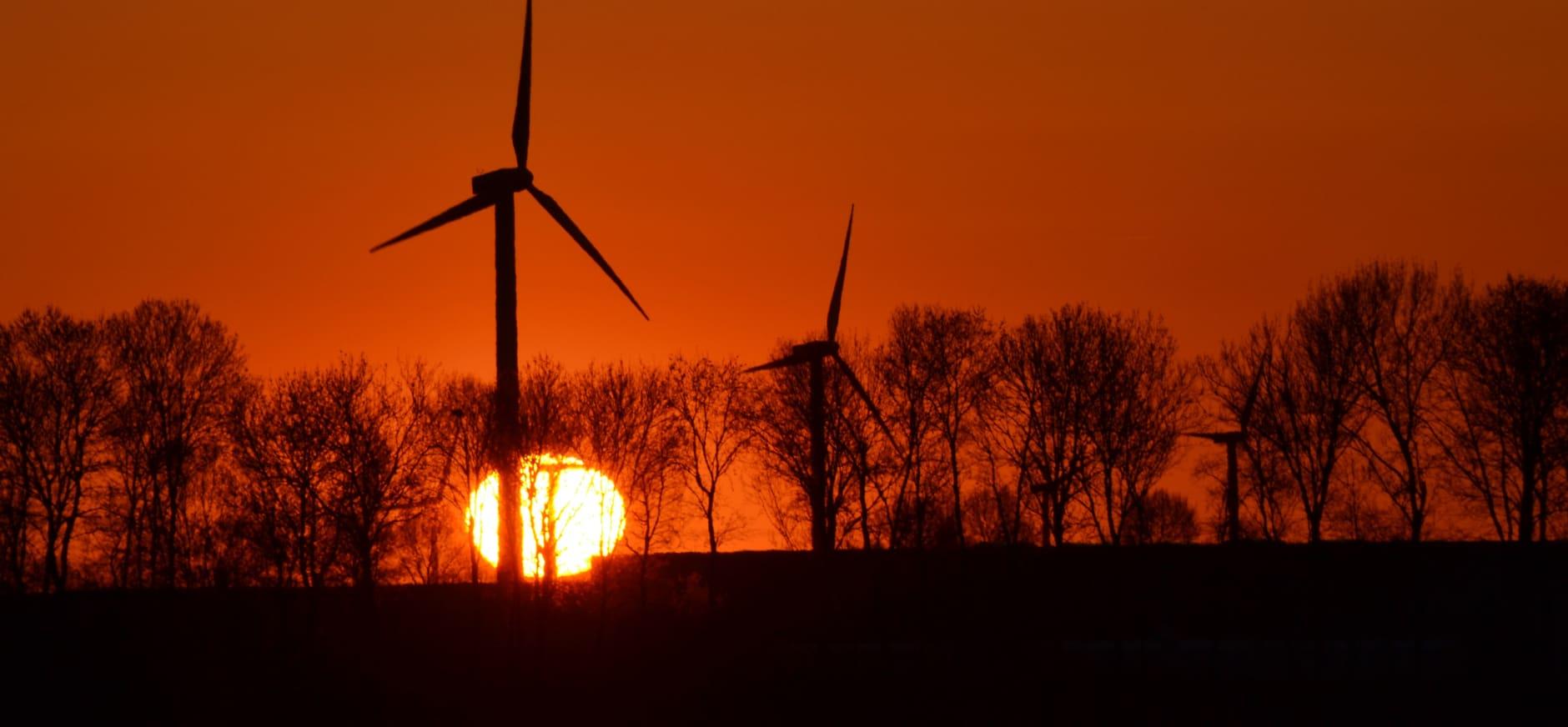 Natuurmonumenten blij met besluit om windmolens te weren uit Nationaal Landschap Winterswijk