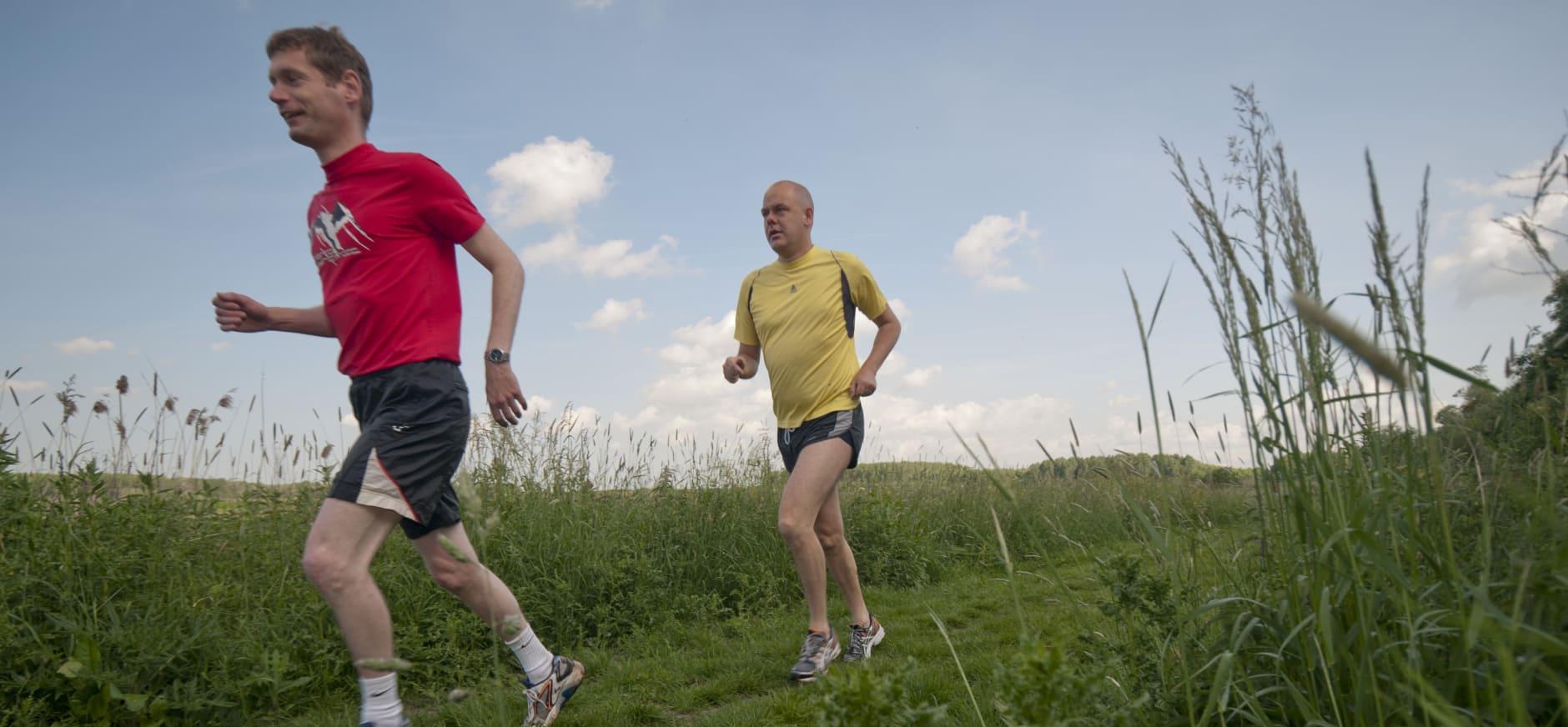 Onderzoek wijst uit: 'Zuid-Hollander wil meer groen en natuur'