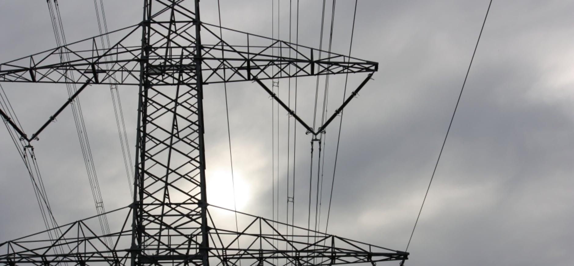 Natuurorganisaties eisen meer zorgvuldigheid bij planontwikkeling 380 kV-hoogspanningsverbinding