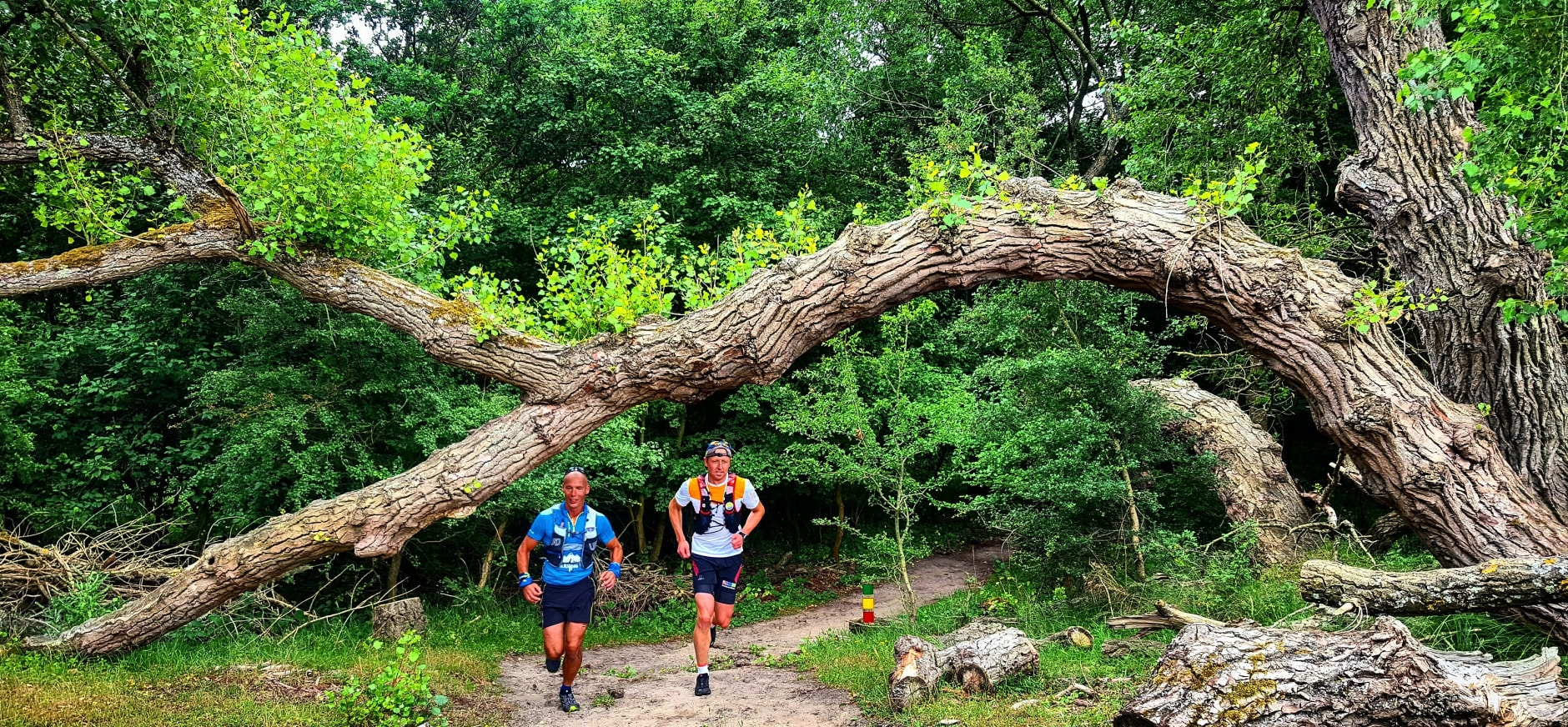 Doe mee aan de IJmuiden Kust Trail
