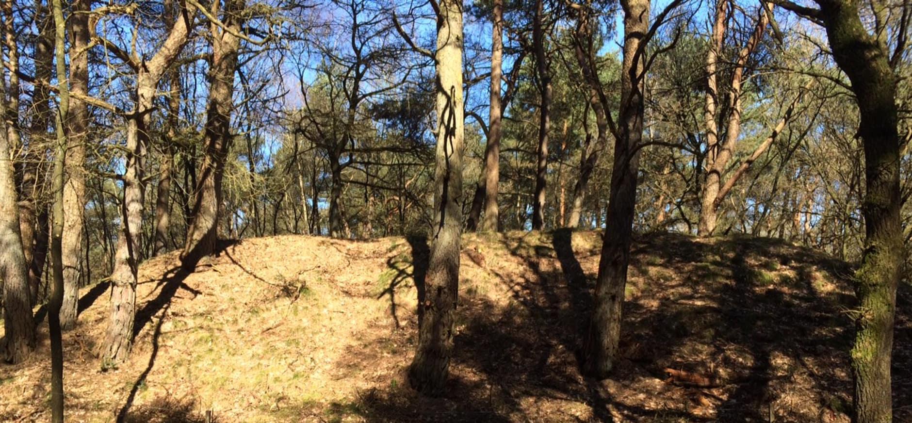 Kogelvanger in Berkenheuvel weer zichtbaar