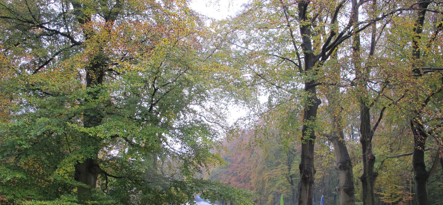 Recordaantal bezoekers in het Theehuis op Oud Groevenbeek