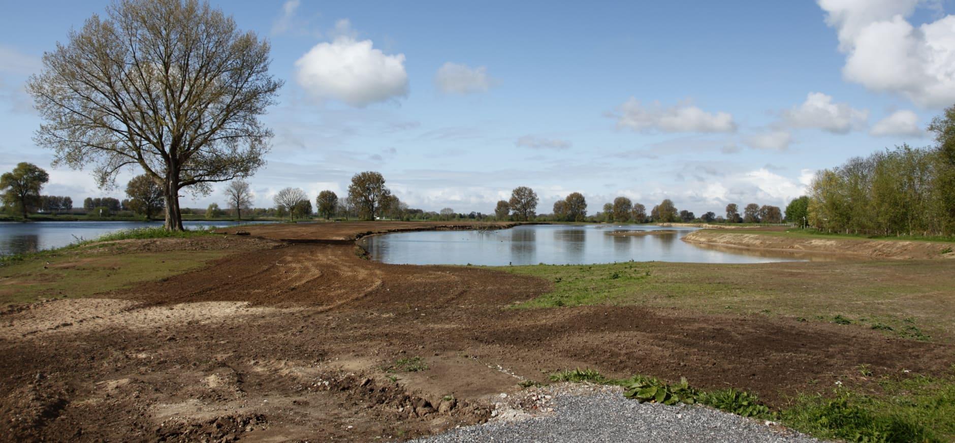 Nieuwe geul Maasbommel zorgt voor meer riviernatuur