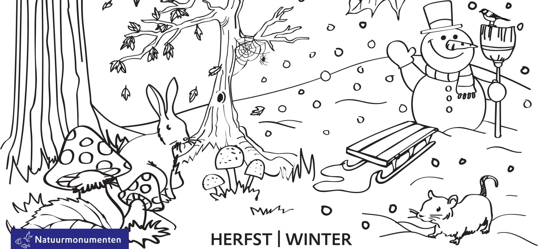 Kleurplaten Herfst Winter.Kleurplaat Winter Natuurmonumenten