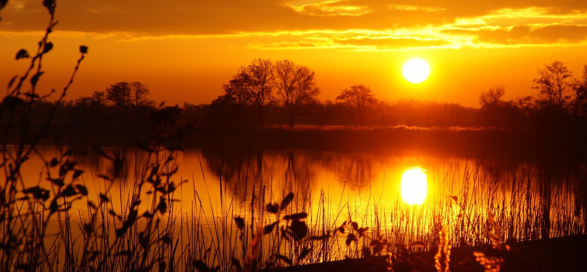 Beleef de nacht op het Dwingelderveld tijdens de Midzomernachtloop