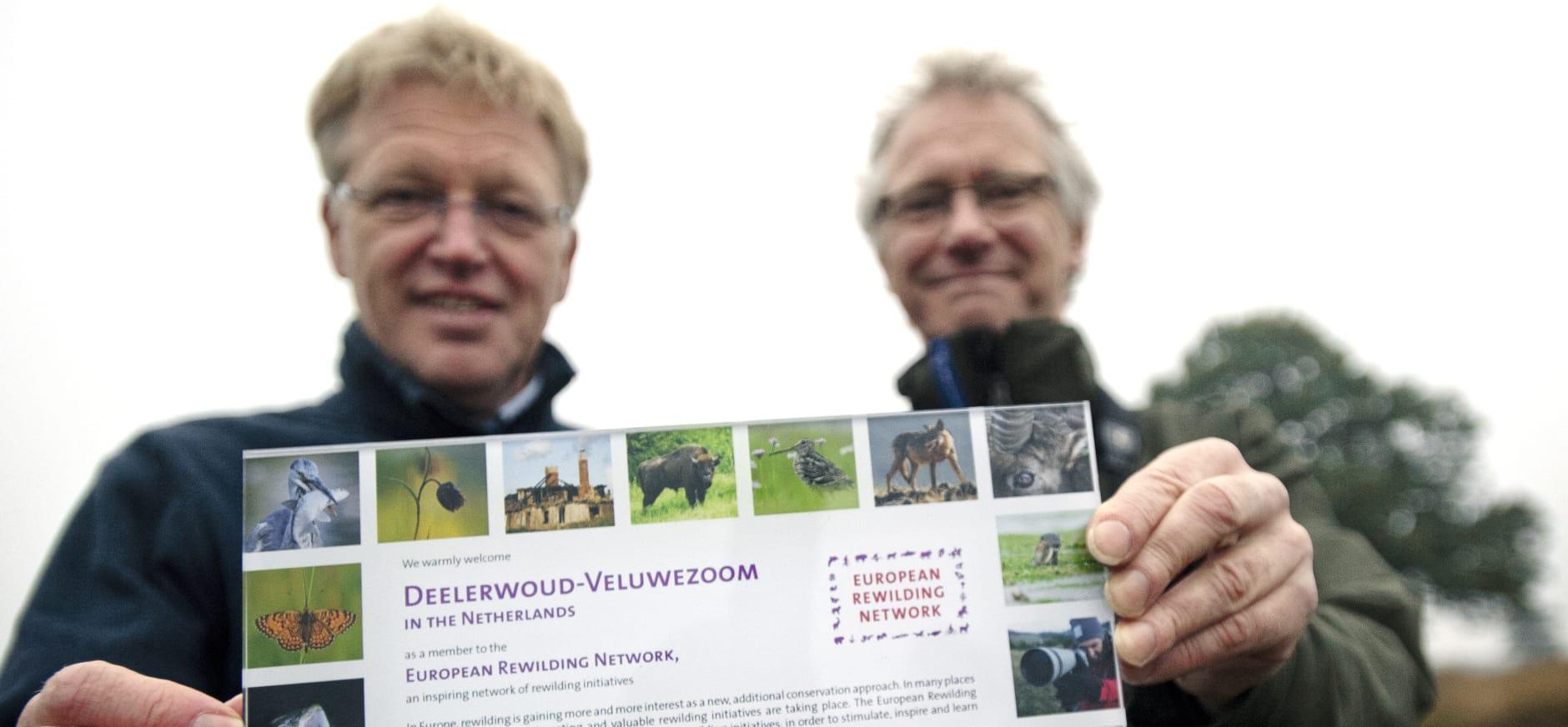 Drents Friese Wold doet mee met Rewilding Europe