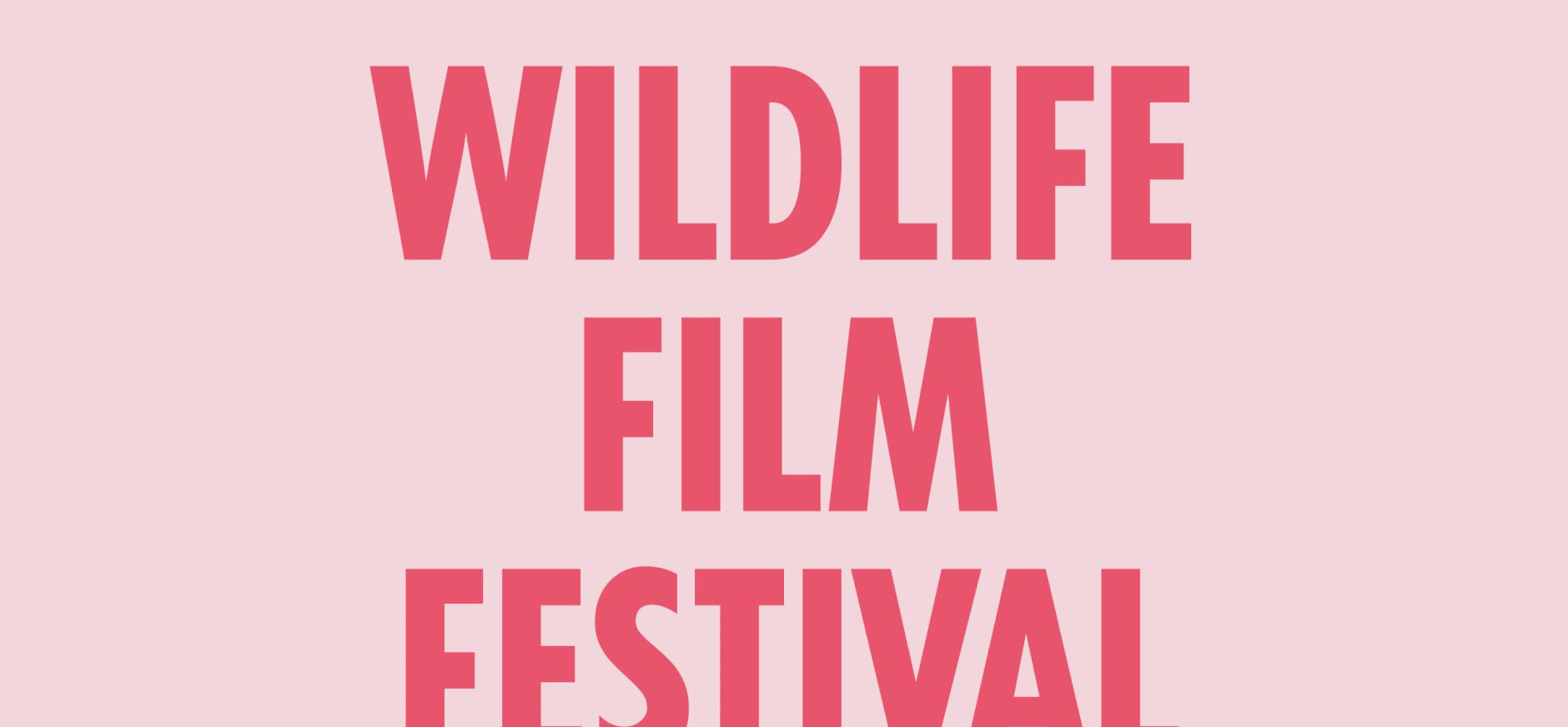 De mooiste natuurfilms tijdens Wildlife Film Festival Rotterdam 2017