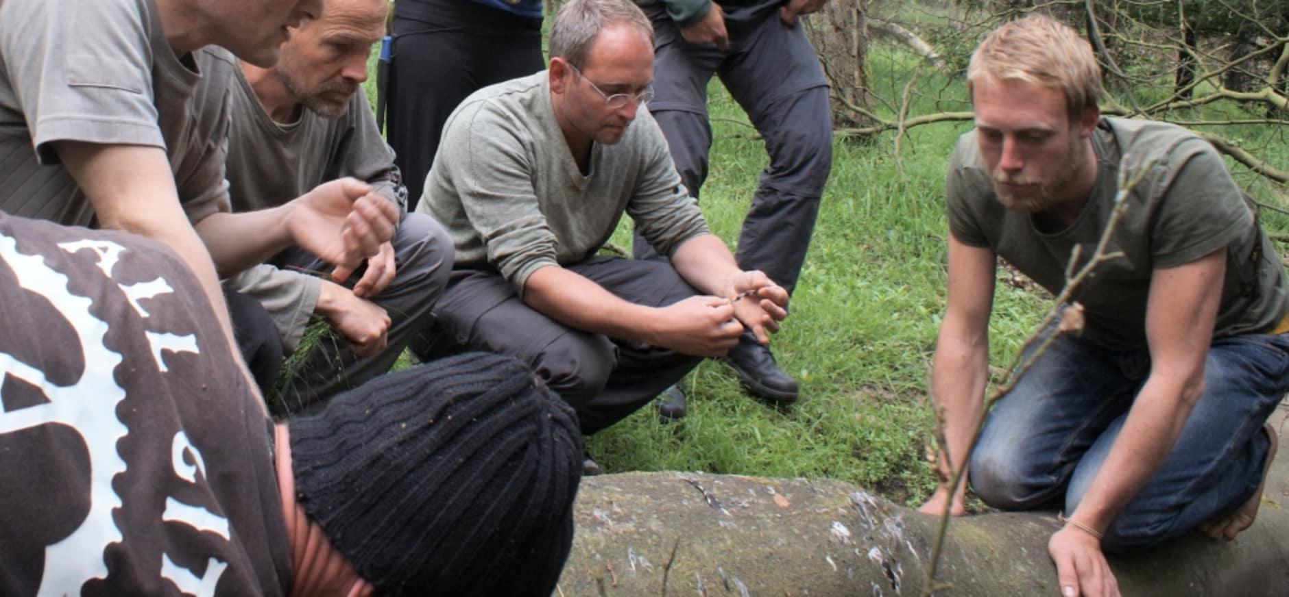 Weekendcursus leren overleven in het bos