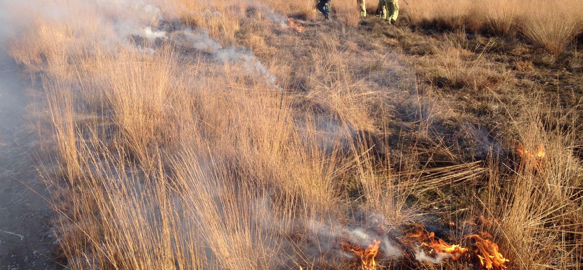 Heidebranden in het Dwingelderveld