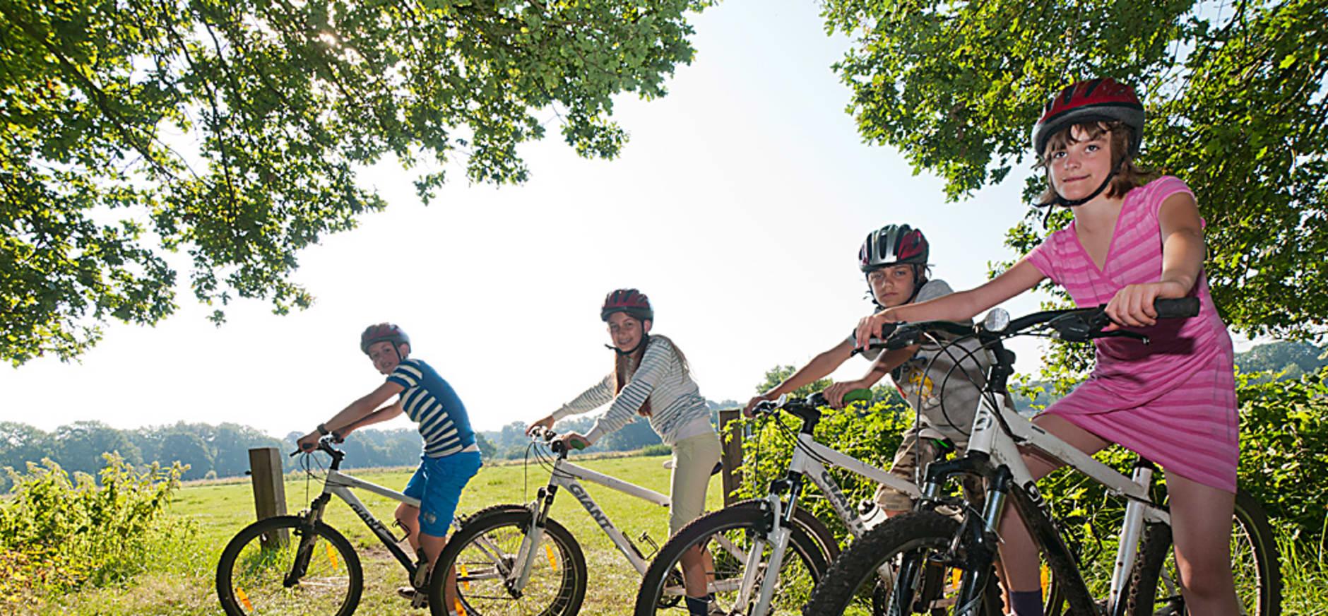 Nieuwe fietsroute combineert Veluwe met rivierenland