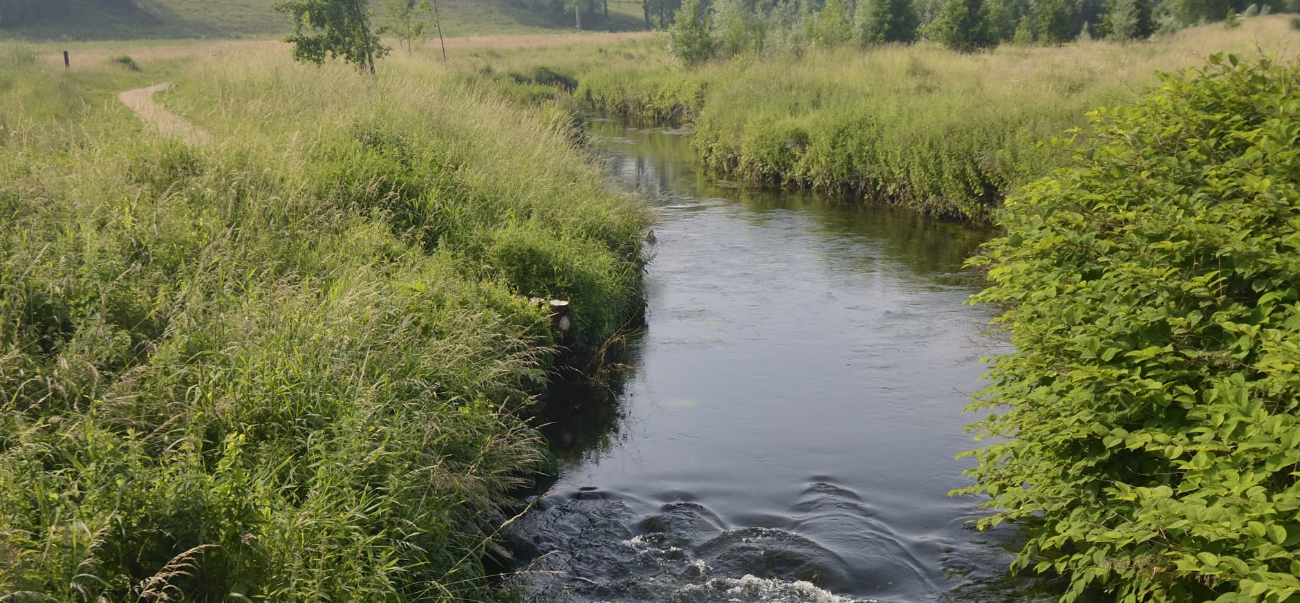 Natuurgrondenruil in Limburg voor effectiever beheer