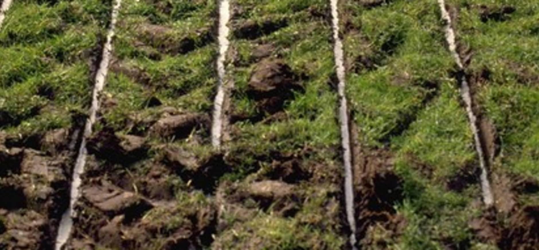 Europees landbouwbeleid moet op de schop'