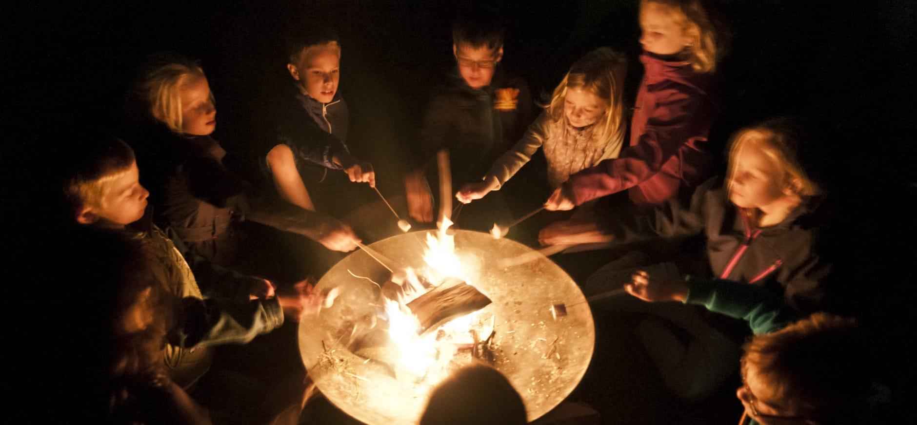 Beleef de magie van het Harderbos tijdens de Midzomernachtloop van OERRR