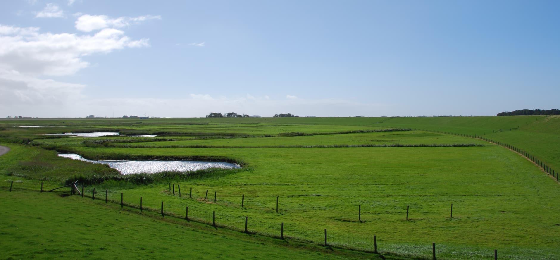 De Zandkuil op Zandkes, Texel