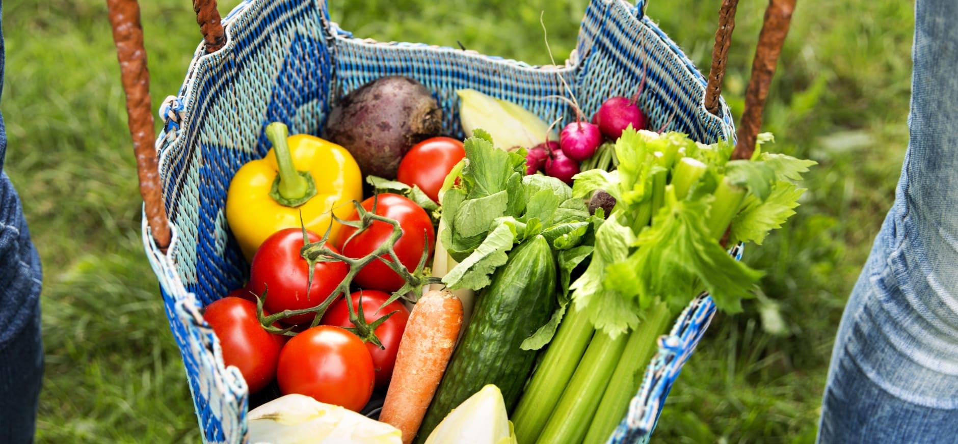 Praat mee over de toekomst van ons voedsel