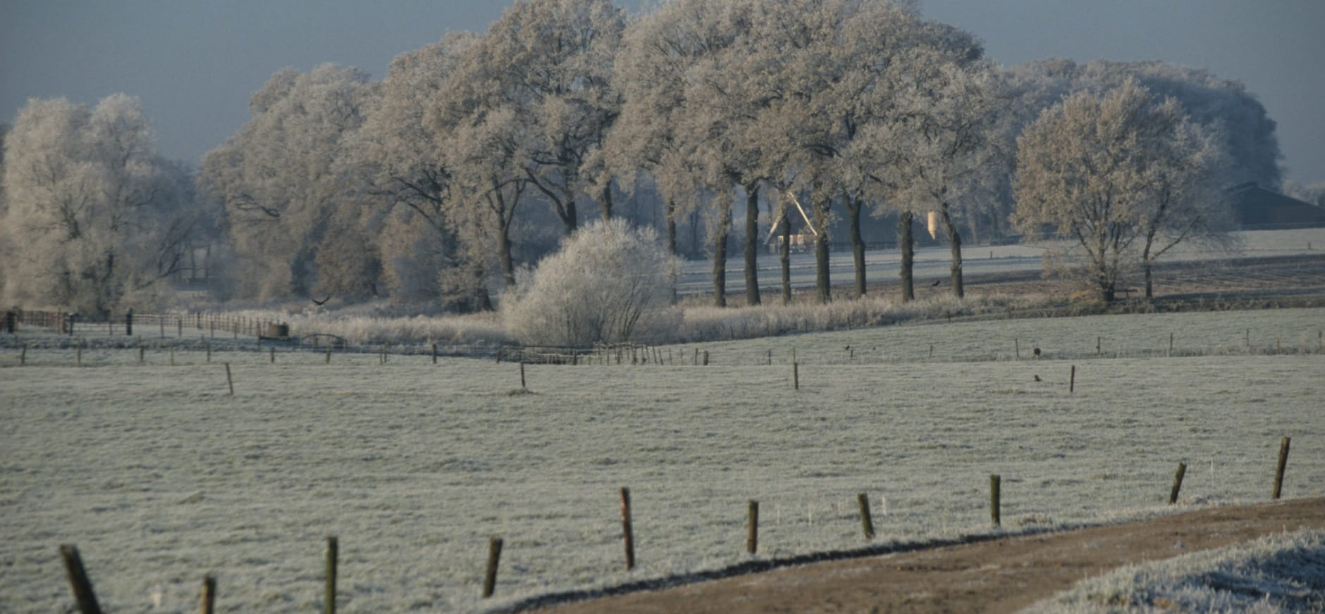 Winter in Twente