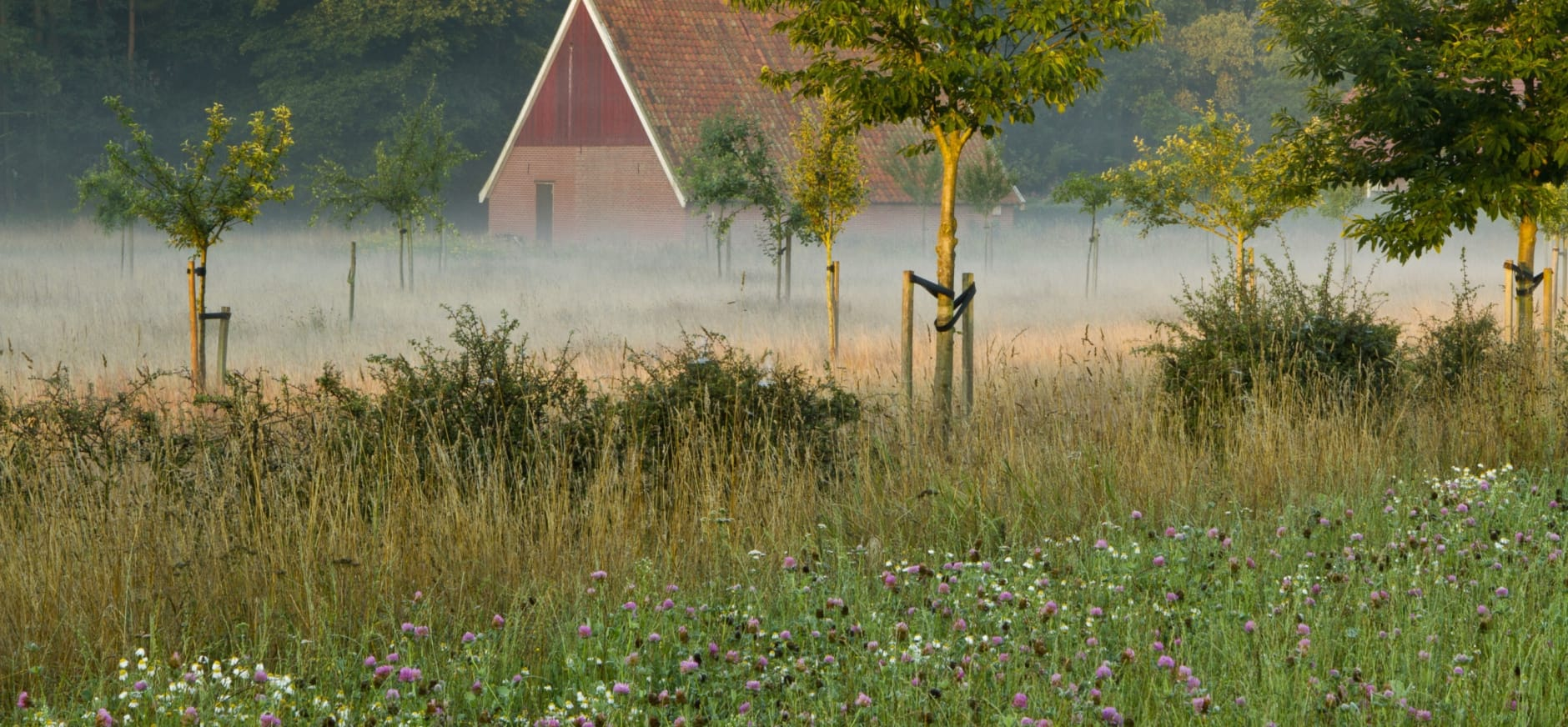 Het prachtige landgoed Mentink van Natuurmonumenten