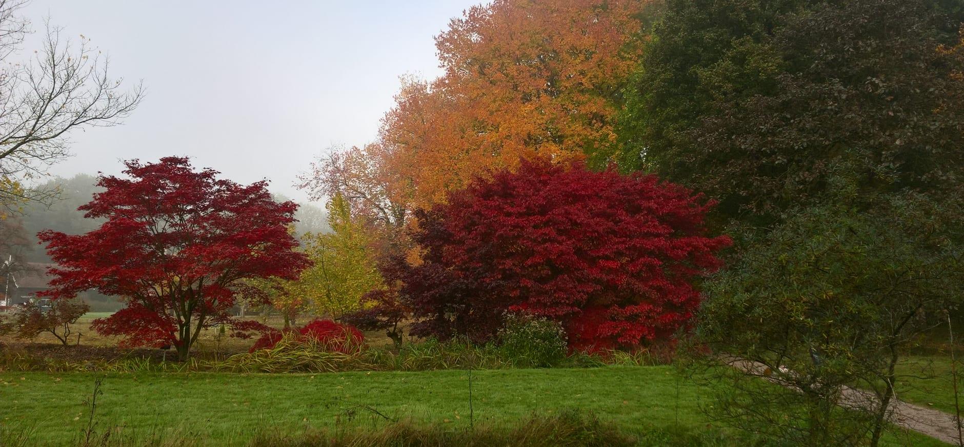 arboretum poort bulten herfst