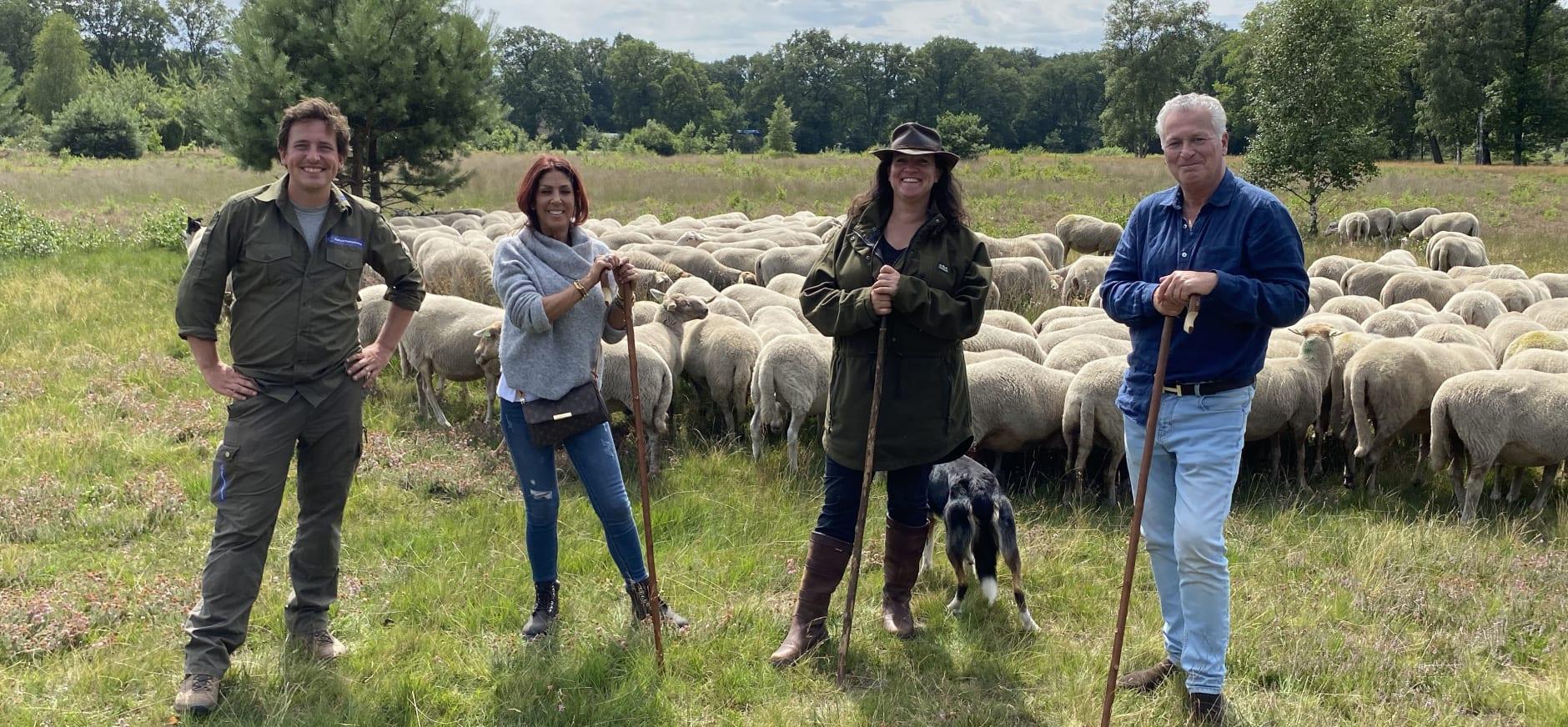 Herder, boswachter, bekende Nederlanders en kudde