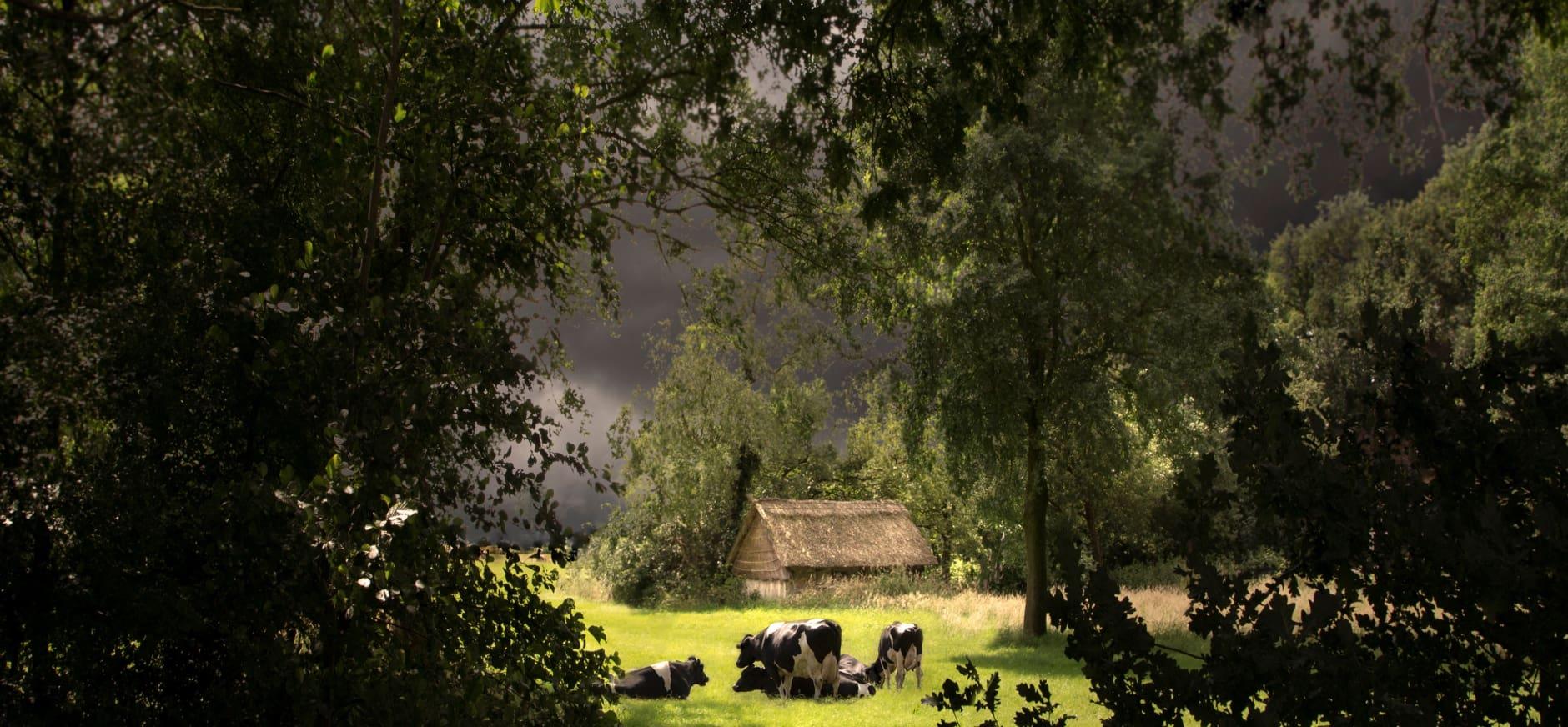 Landschapsfotografie expositie
