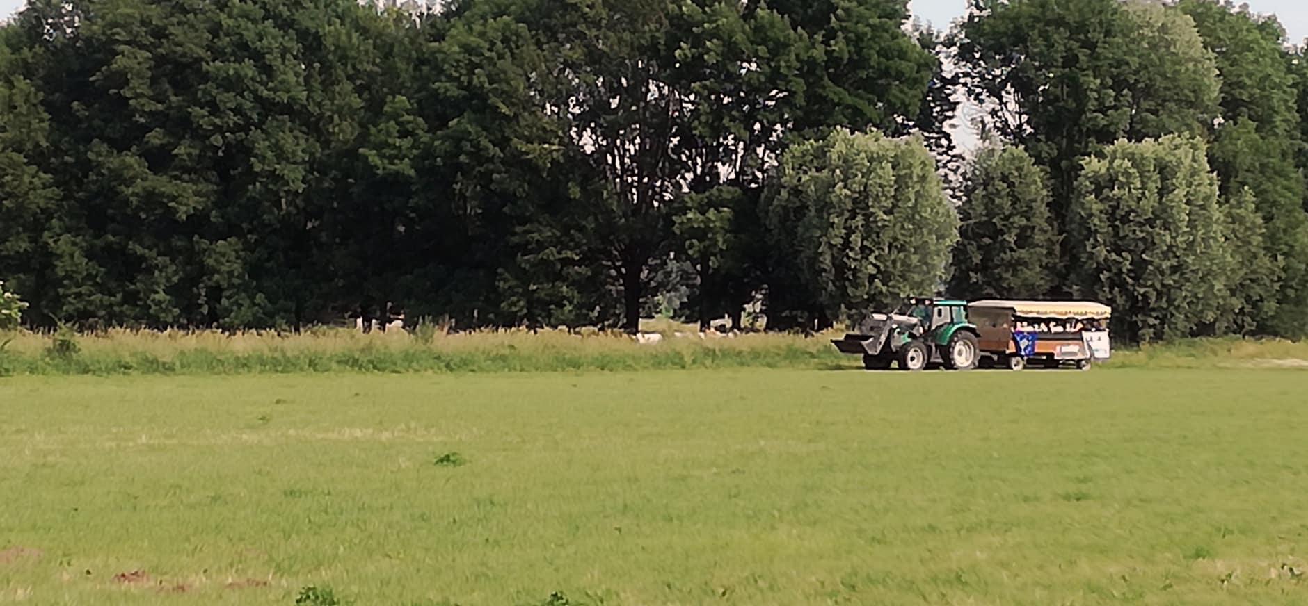 Een huifkar vol schoolkinderen bij de opening van de Koppenwaard