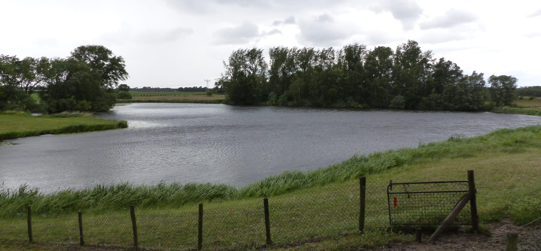 Ven Hartenaas bij de Elshoutse Zeedijk