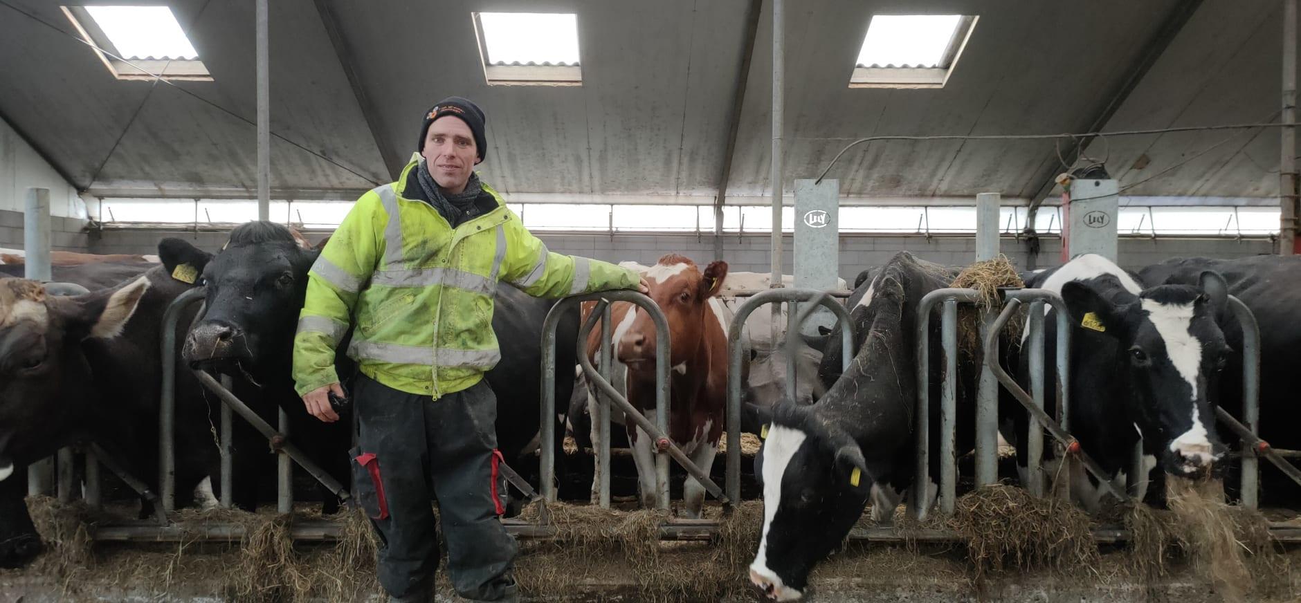 Adopteer een koe bij boer Dirk Gravesteyn