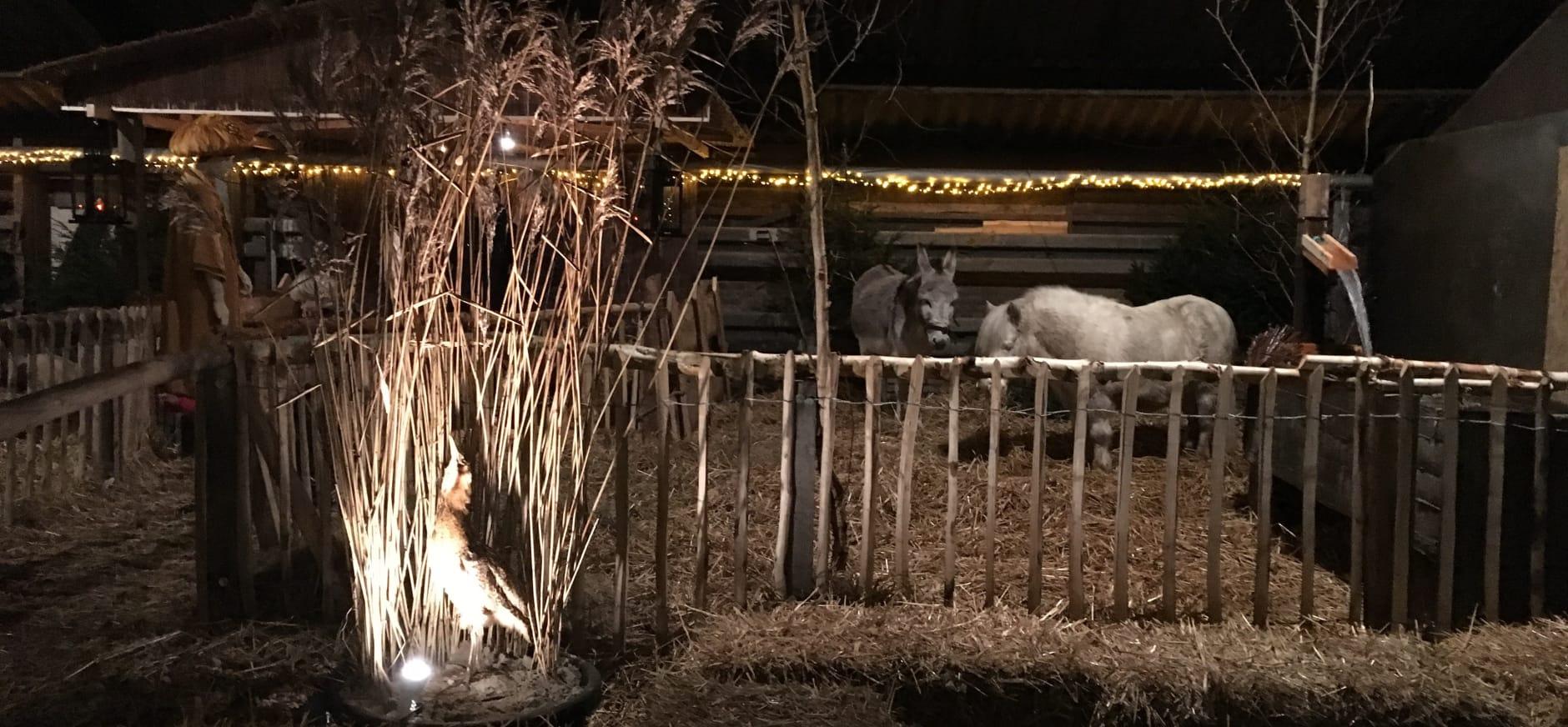 Levende kerststal Onlanderij