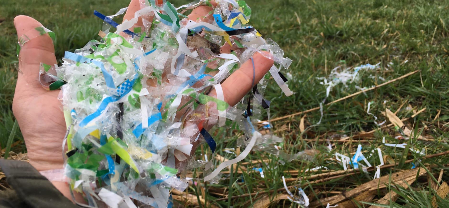 plastic in natuur