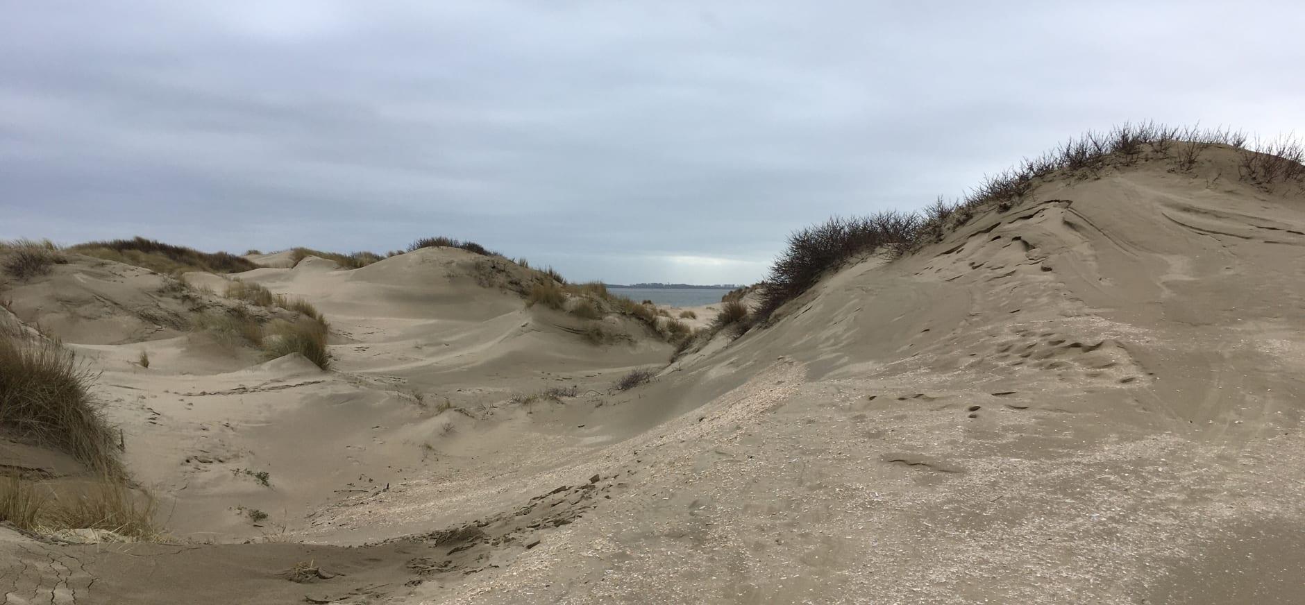 Strandovergang Voornes Duin