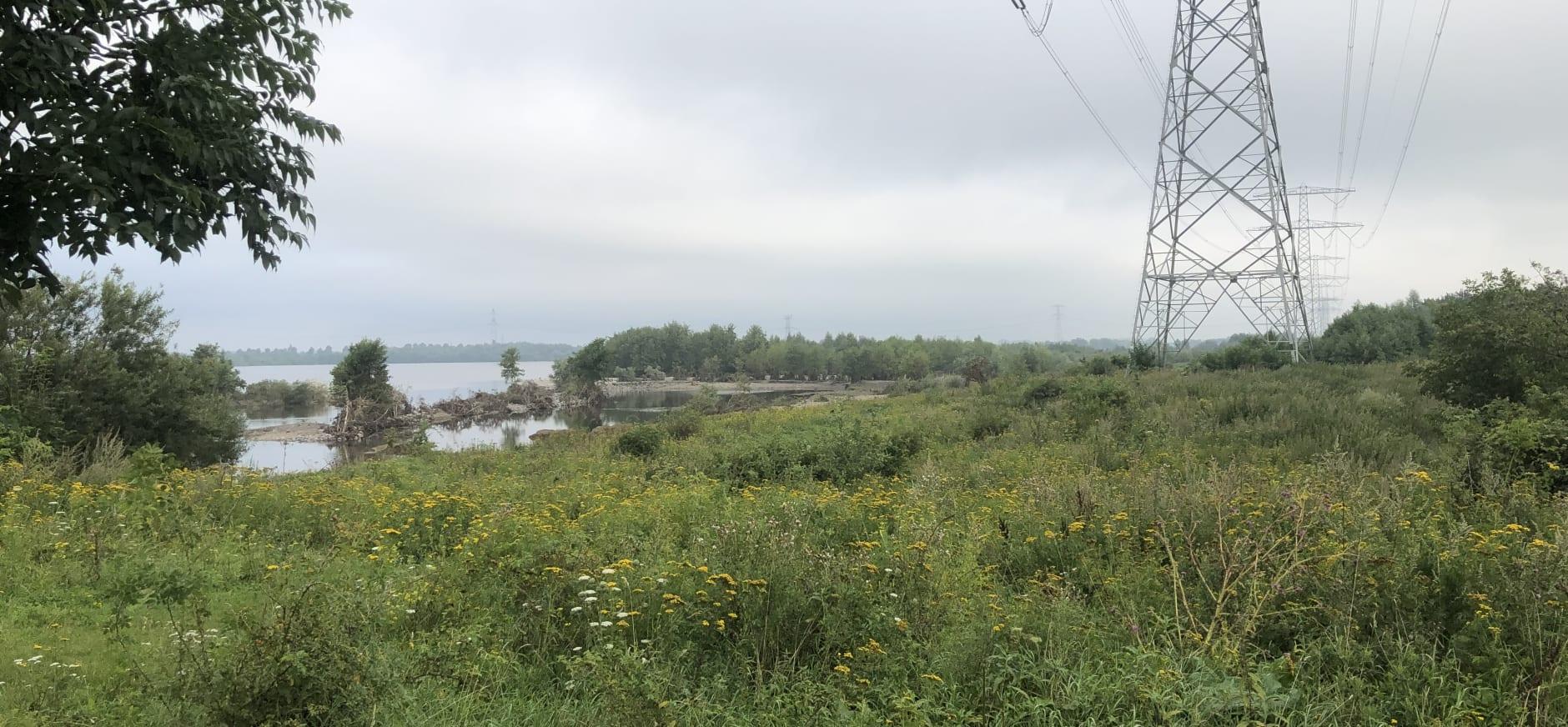 Molenplas na zomerhoogwater - augustus 2021
