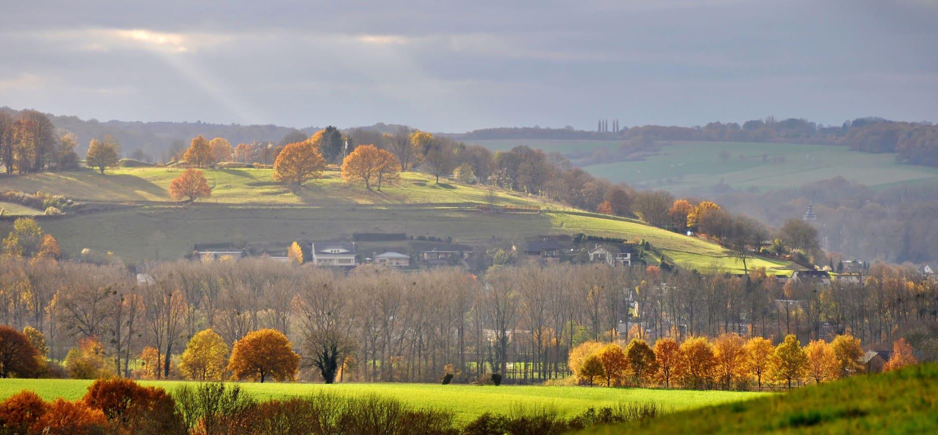 Limburgs landschap ZL