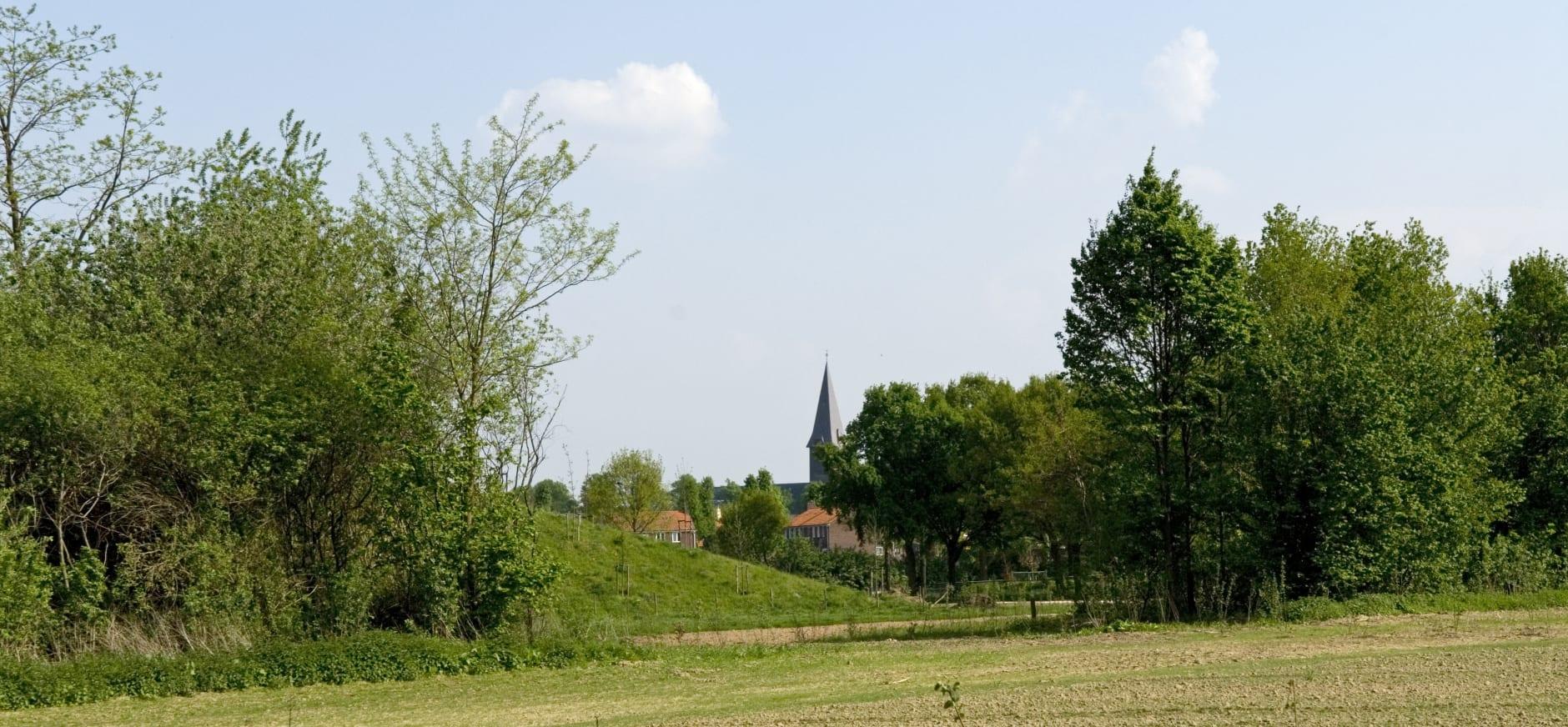 Nieuw groen naast de kerk...