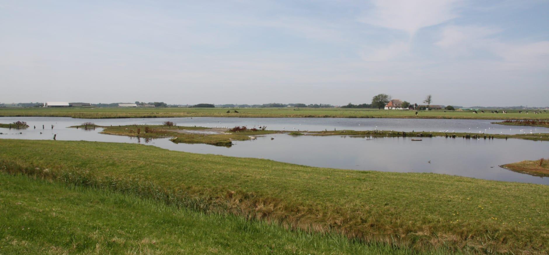 Ottersaat - Texel
