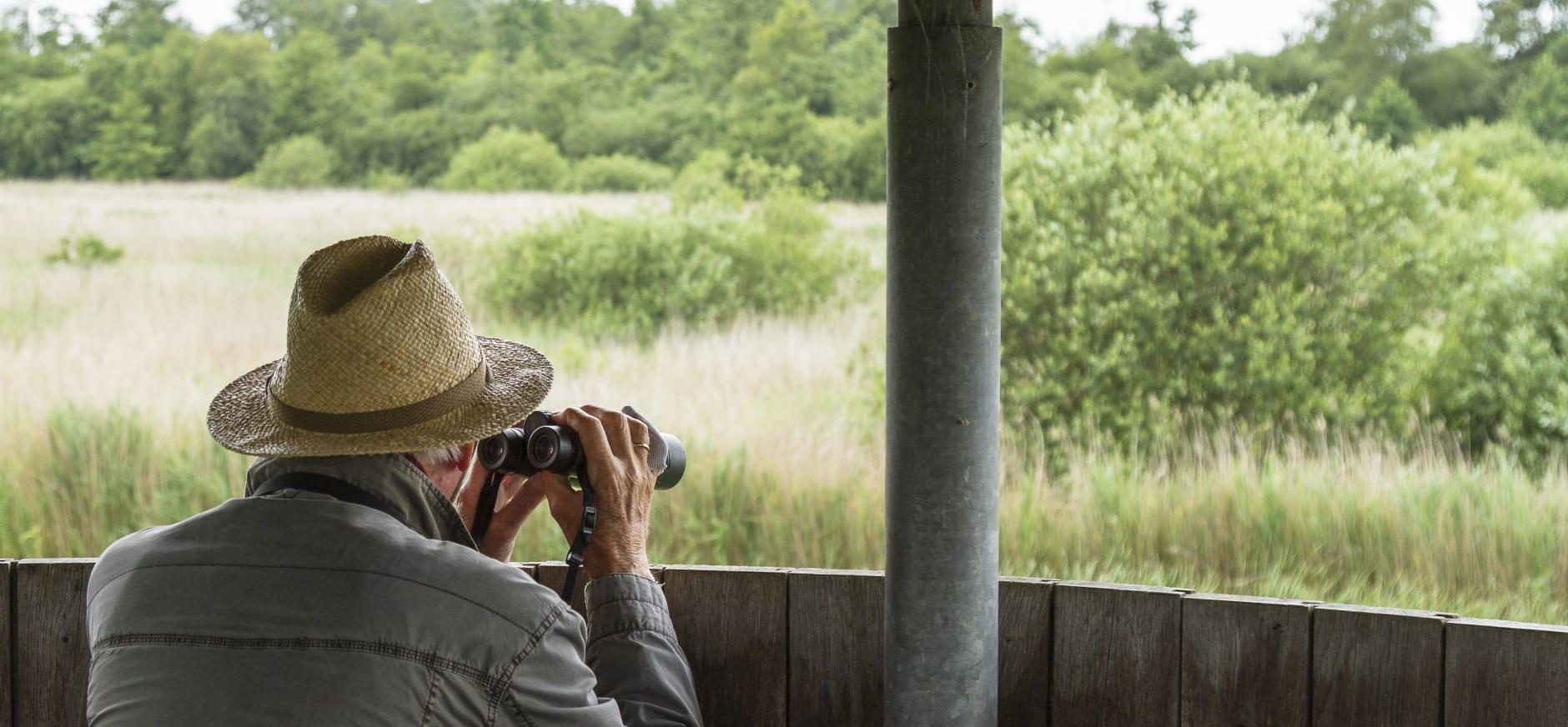 Vogelkijkhut in De Wieden