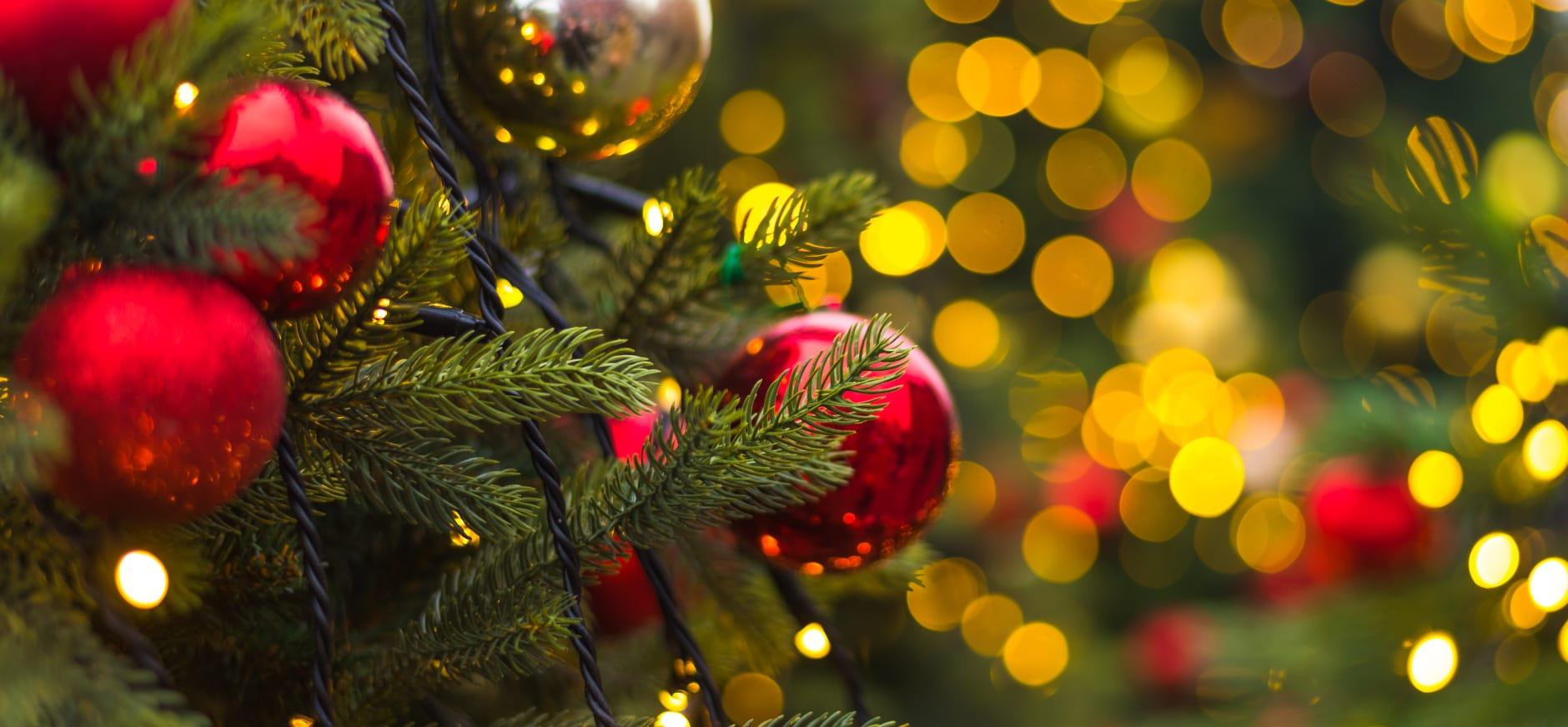 Kerst op De Onlanderij