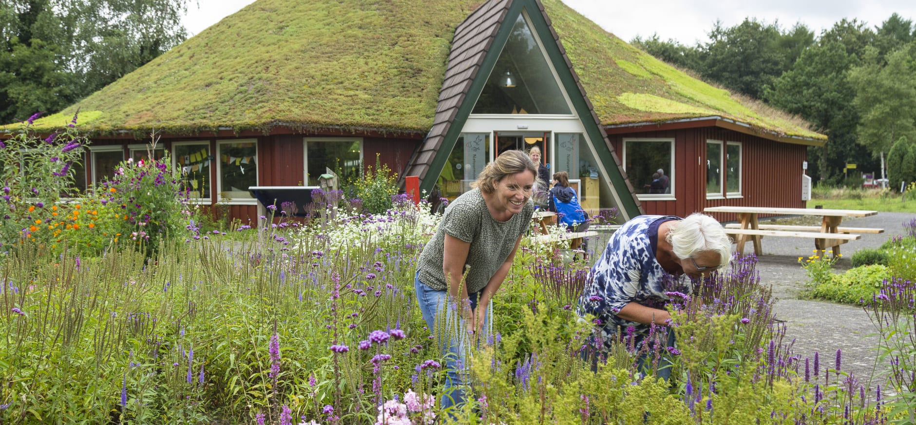 Tuin bezoekerscentrum Dwingelderveld