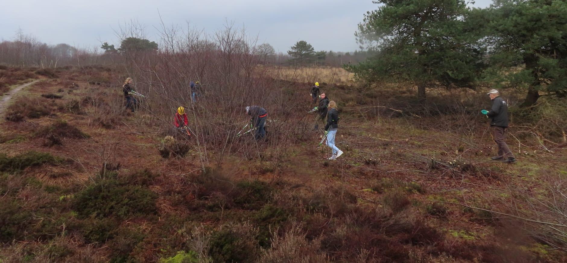 kinderen helpen bij herstel heide Mantingerveld