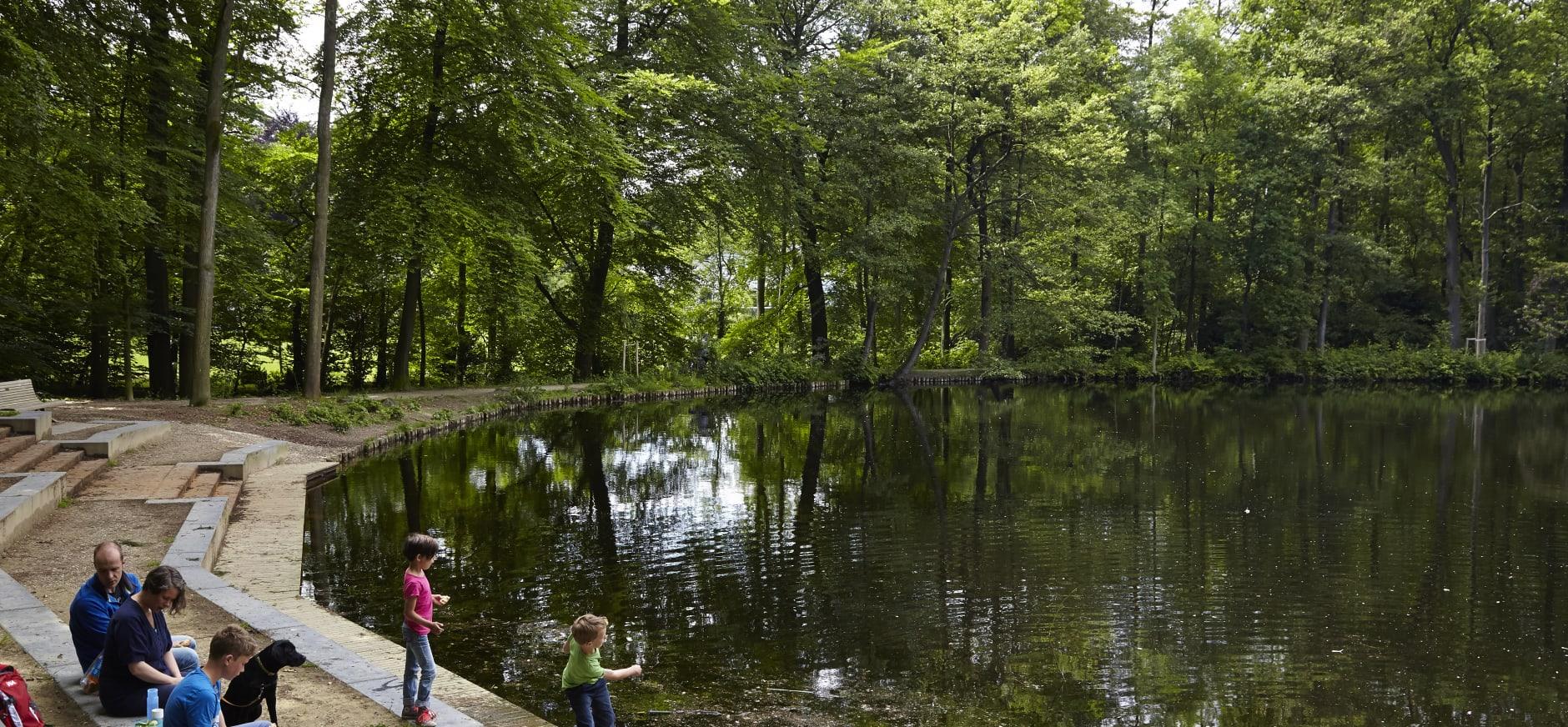 Maak een boswandeling op Veluwezoom