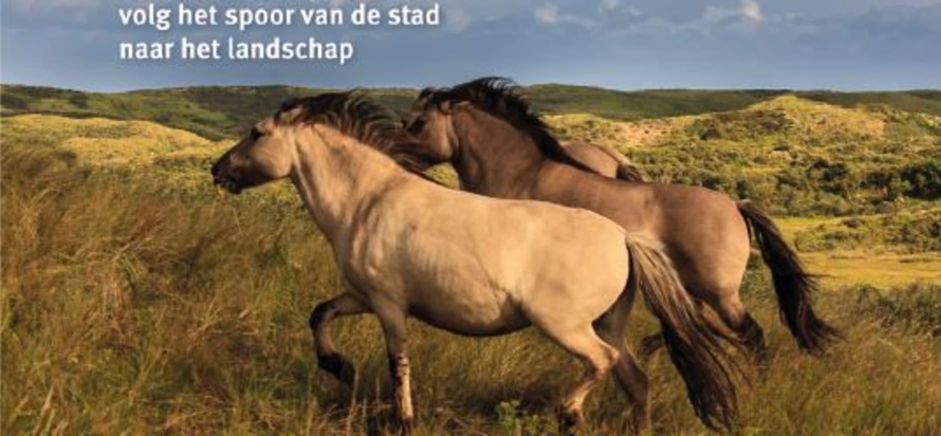 Buitenpoort Santpoort Noord