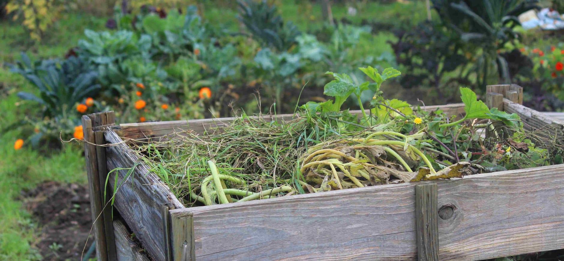 Compost maken voor je tuin