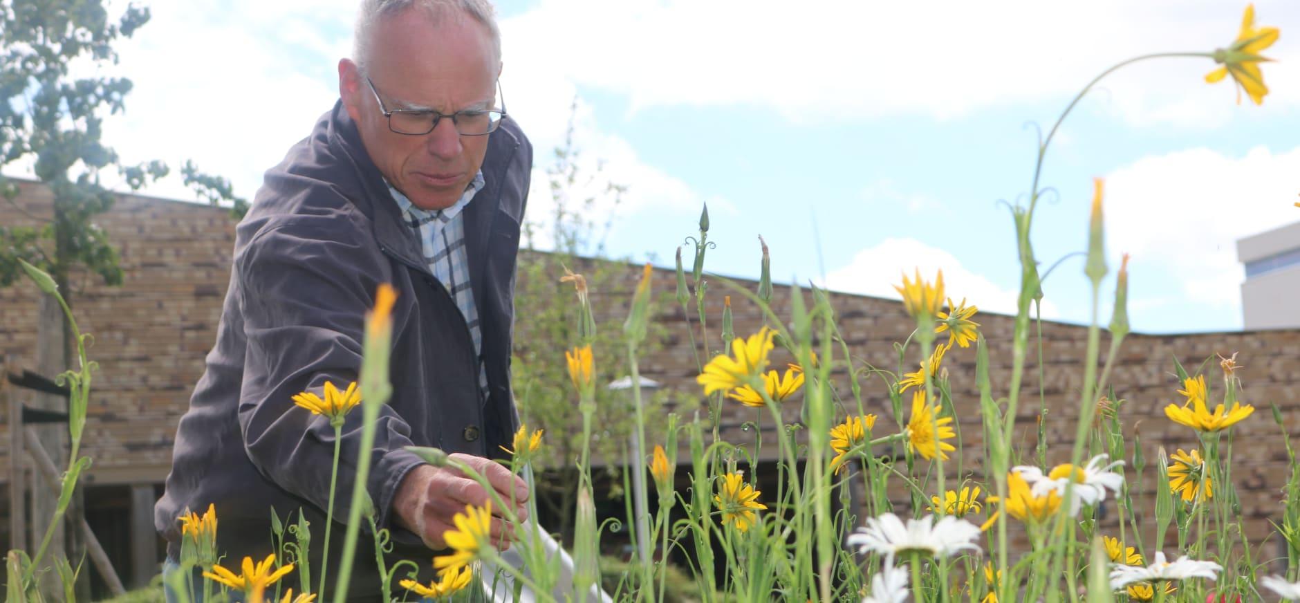 Hartkamp aalte maakt plaats voor wilde bloemen