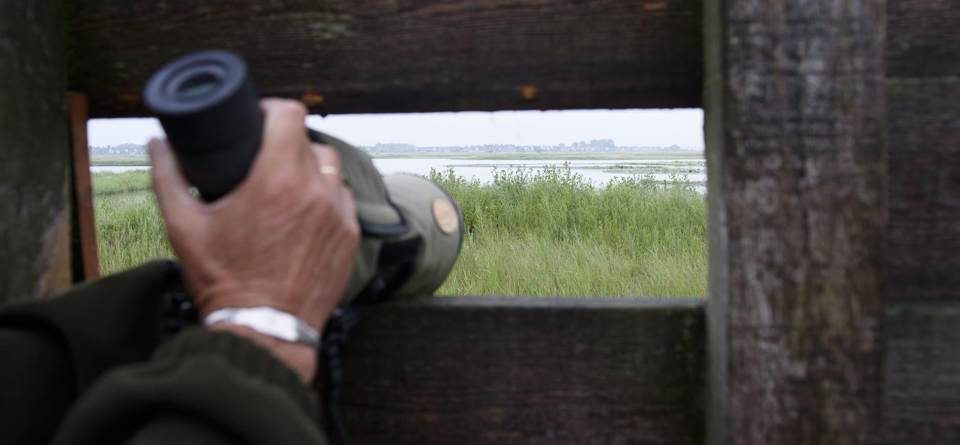 Vogelkijkhut Hegewiersterfjild
