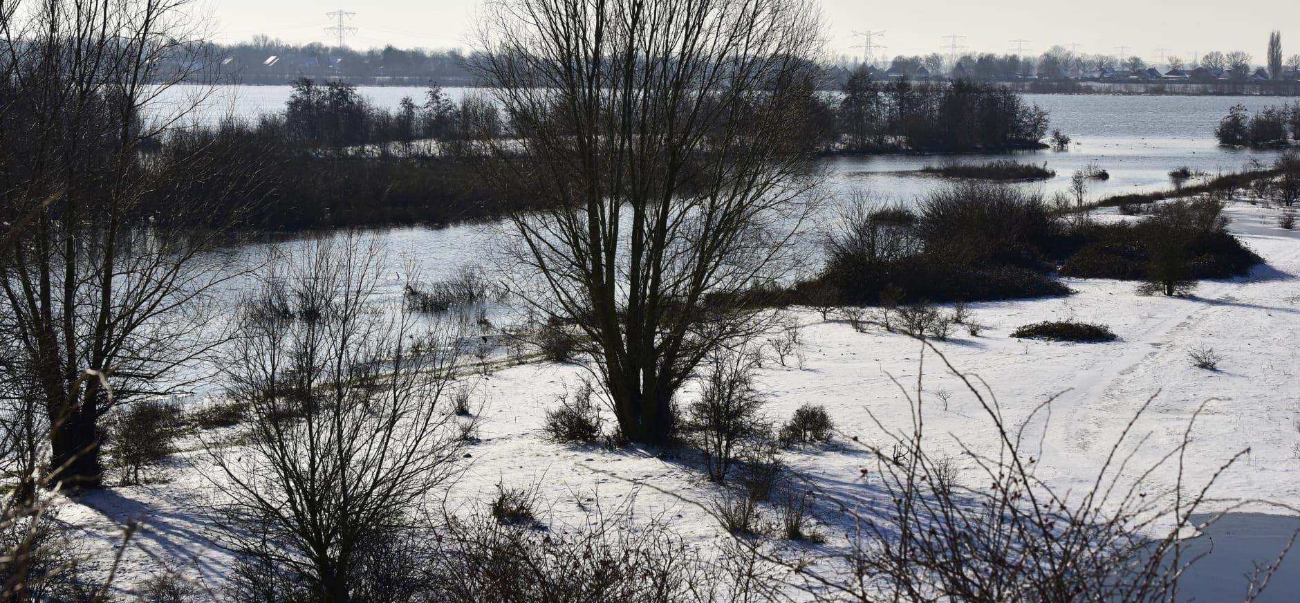 Molenplas in winter