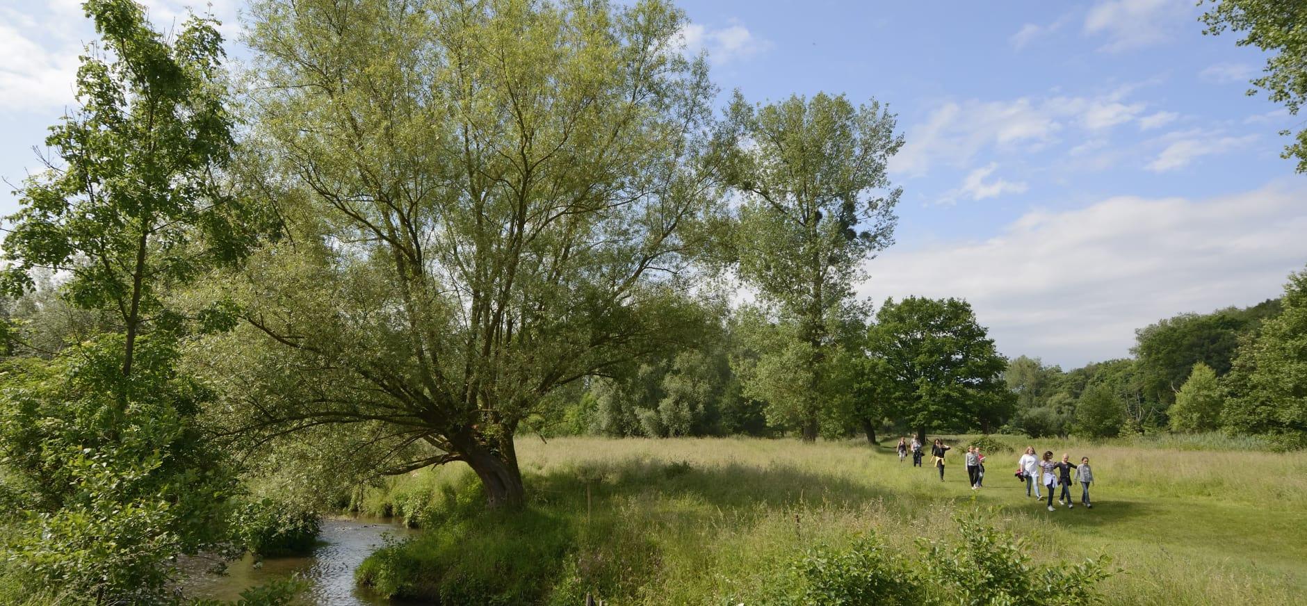 Wandelen langs rivier de Geul in het Geuldal Zuid-Limburg