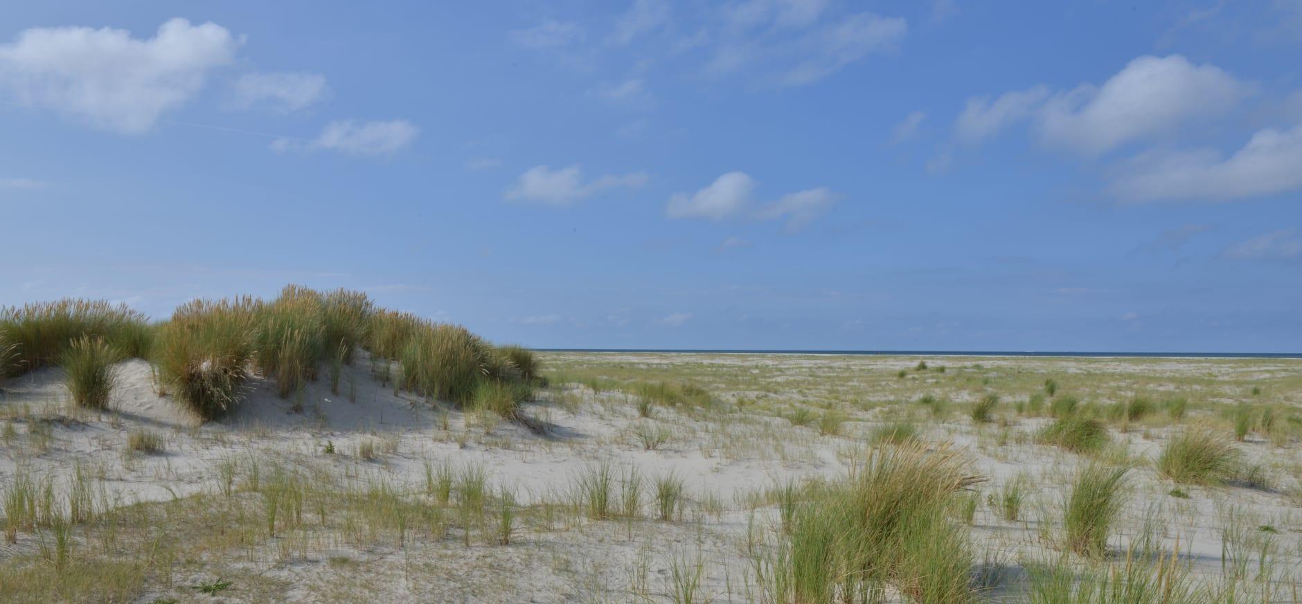 Het strand van Schiermonnikoog
