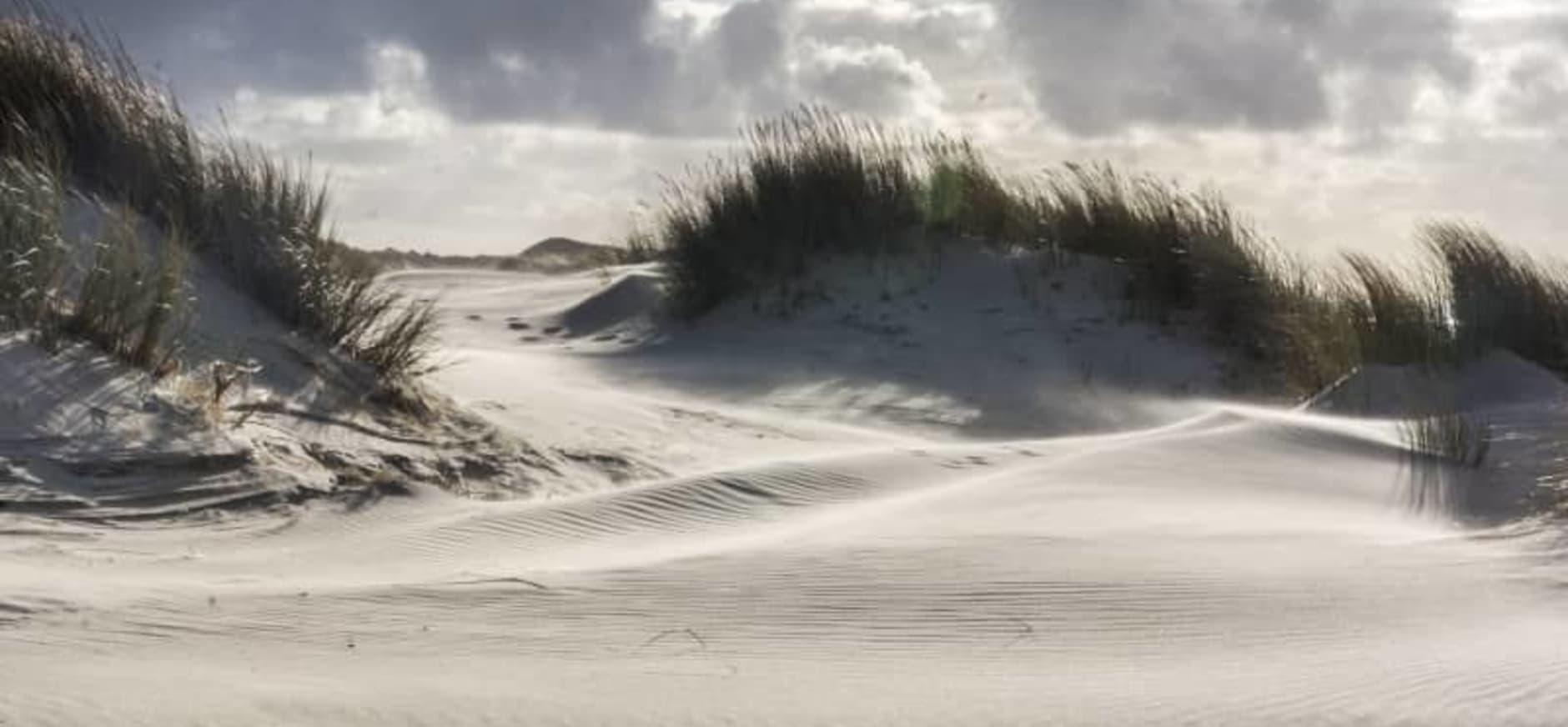 stuivende duinen