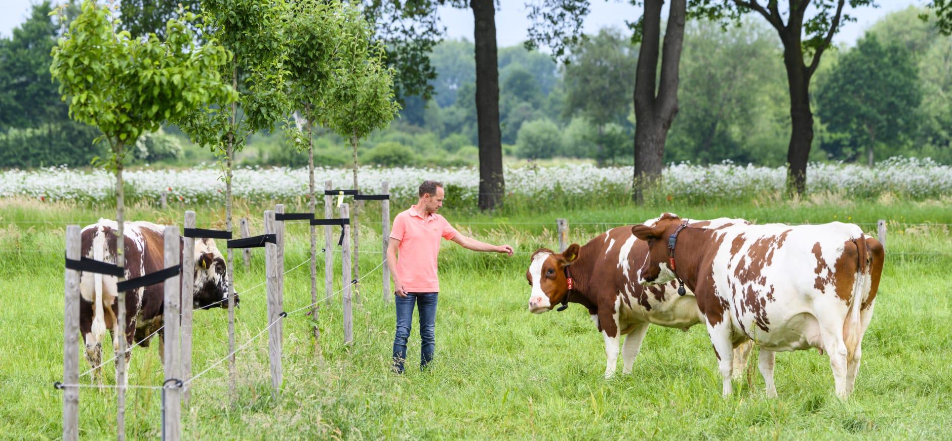 Boer Peter van den Broek boert natuurinclusief