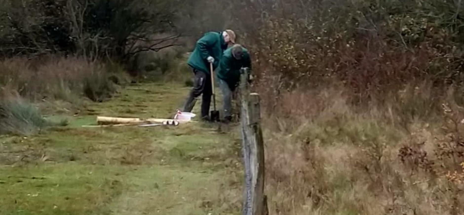 vrijwilligers plaatsen rasterpalen